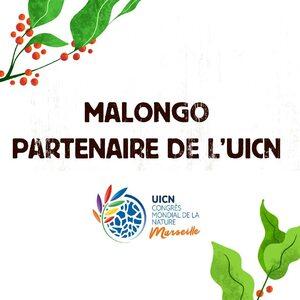 Le congrès de l'UICN se déroule actuellement à #Marseille et s'y retrouvent tous les acteurs mondiaux de la conservation de la nature. #Malongo est fier de pouvoir être, cette année, un des partenaires et mécènes de cet évènement en adéquation avec nos valeurs et engagements. ☕️🇫🇷 #UICN #Café #Coffee