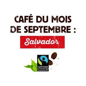 Le #café du mois #Malongo : Salvador, Commerce Equitable.  Cultivé à proximité du lac de Coatepeque et de la réserve de biosphère d'Apaneca-Ilamatepec, cette zone forestière et volcanique abrite de nombreuses plantations de café sous ombrage, en système agroforestier, qui participent à la préservation de la biodiversité locale. Nous vous conseillons de le déguster accompagné d'un dessert fruité.  #CafesMalongo #Coffee #CommerceEquitable #Fairtrade
