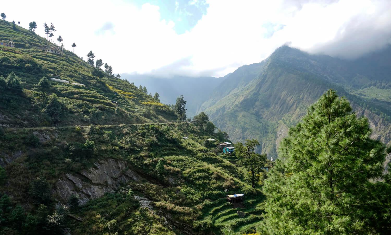 bandeau offre torrefacteur decembre 2019 nepal 1500×900